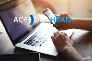 How to Choose a Pay Per Head Service?