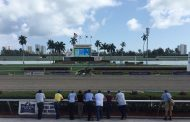Ft. Lauderdale Stakes Entries & Free Picks [2018]