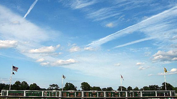 Haskell Invitational Stakes Payouts & Results [WIN, PLACE, SHOW]