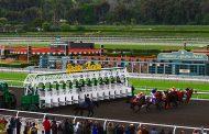 Palos Verdes Stakes Entries & Free Picks [2018]