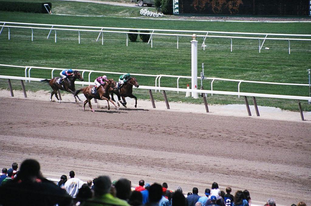 Belmont Oaks Invitational Stakes Entries & Free Picks [2019]