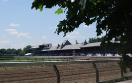 Schuylerville Stakes Entries & Free Picks [2017]