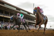 2017 Breeders' Cup Preview and Tips - Predictions