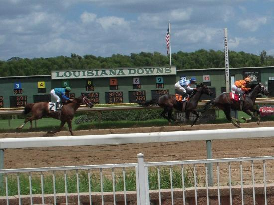 Today's Free Louisiana Downs Winning Horse Picks [2019]