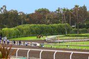 Santa Margarita Stakes Entries & Free Picks [2018]
