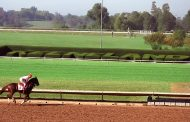 Blue Grass Stakes Payouts & Results [WIN, PLACE, SHOW]