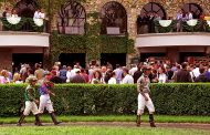 Shadwell Turf Mile Stakes Payouts & Results [WIN, PLACE, SHOW]