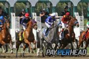 3 Ways Agents Get 35% Credit Cash Back For Triple Crown