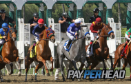 3 Ways Agents Get 35% Credit Cash Back For Triple Crown