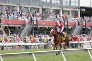 Maryland Sprint Stakes Entries & Free Picks [2018]