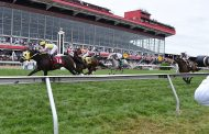 Gallorette Stakes Entries & Free Picks [2019]