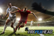 4 Online Bookie Tools Must Use During the 2018 FIFA World Cup