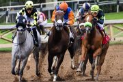 Cotillion Stakes Entries & Free Picks [2019]
